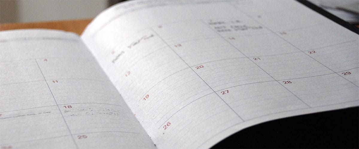 Plan and Schedule
