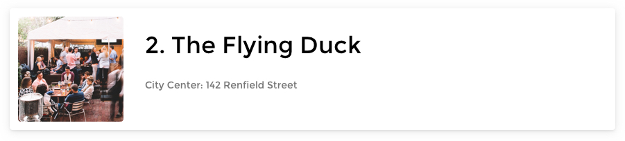 The Flying Duck